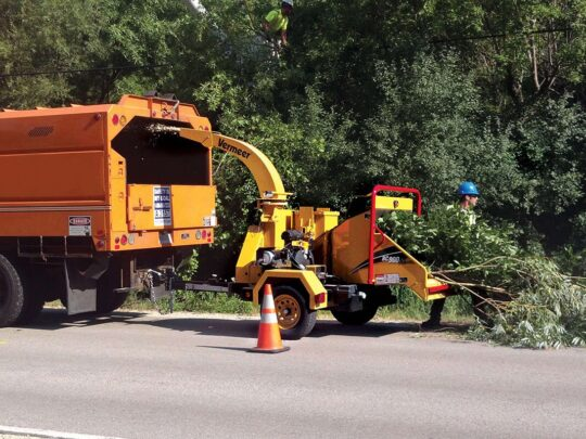 Commercial Tree Services-New Tampa FL Tree Trimming and Stump Grinding Services-We Offer Tree Trimming Services, Tree Removal, Tree Pruning, Tree Cutting, Residential and Commercial Tree Trimming Services, Storm Damage, Emergency Tree Removal, Land Clearing, Tree Companies, Tree Care Service, Stump Grinding, and we're the Best Tree Trimming Company Near You Guaranteed!